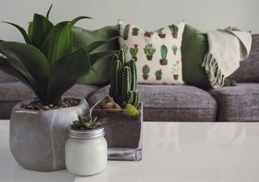 Cómo elegir el sofá chaiselongue  ideal